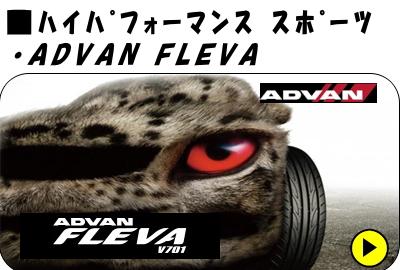 FLEVA